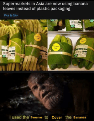 The bananas by -Somebody- MORE MEMES: Supermarkets in Asia are now using banana  leaves instead of plastic packaging  Pics & Gifs  Pitils  P de  Sale  I used the Bananas to Cover the Bananas The bananas by -Somebody- MORE MEMES