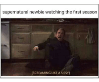 Memes, Supernatural, and 🤖: supernatural newbie watching the first season  ISCREAMING LIKE A SISSY Rip newbie ---------------------- jensenackles deanwinchester winchester supernatural supernaturalfandom spn spnfamily alwayskeepfighting youarenotalone jaredpadalecki samwinchester castiel castielangelofthelord mishacollins spnfandom mishaporn destiel cockles teamfreewill dean sam cas rowena ruthconnel crowley supernaturalfunny supernaturaltumblr