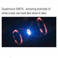 @science is a must follow 👌🔥: Supernova 1987A, amazing example of  what a star can look like when it dies @science is a must follow 👌🔥