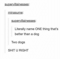 comment your dogs name backwards: supervillainesses:  minasume  supervillainesses  Literally name ONE thing that's  better than a dog  Two dogs  SHIT U RIGHT comment your dogs name backwards