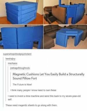 Future, Time, and Old: superwhopotlockpsychotard  leeshajoy:  mschaos:  joebagofdoughnuts  Magnetic Cushions Let You Easily Build a Structurally  Sound Pillow Fort  The Future is Now!  I think many people I know need to own these  I need to invent a time machine and send this back to my seven-year-old  self.  These need magentic sheets to go along with them. The optimal future.