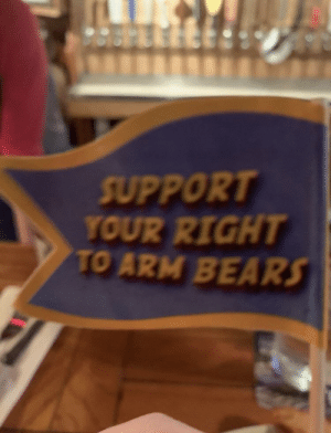 25+ Best Right to Arm Bears Memes | Arm Bears Memes, Second