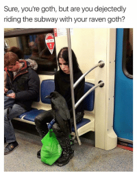 Funny, Life, and Subway: Sure, you're goth, but are you dejectedly  riding the subway with your raven goth?  MT FREE I need a goth girl in my life