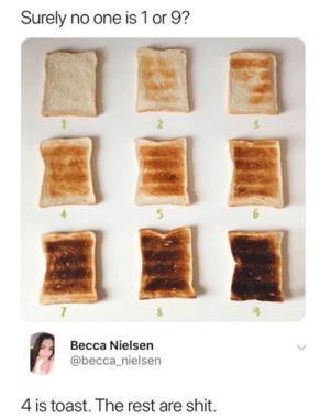 Dank, Shit, and Toast: Surely no one is 1 or 9?  2  3  5  Becca Nielsen  @becca_nielsen  4 is toast. The rest are shit. I like them all. Which is your fav?