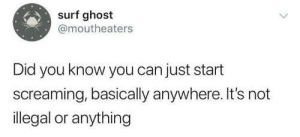 Ghost, MeIRL, and Can: surf ghost  @moutheaters  Did you know you can just start  screaming, basically anywhere. It's not  illegal or anything meirl