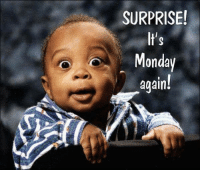 Memes, Good, and Monday: SURPRISE!  It's  Monday  again I hope your Monday is full of good surprises!