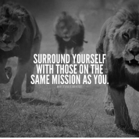 Memes, 🤖, and Force: SURROUND YOURSELF  WITH THOSE ON THE  SAME MISSION AS YOU  @MOTIVATED MINDSET Put yourself in an environment that forces you to level up! 😈