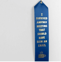 Email, Been, and Another: SURVIVED  ANOTHER  MEETING  THAT  SHOULD  HAVE  BEEN AN  EMAIL