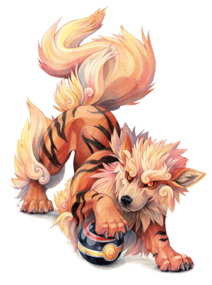 Target, Tumblr, and Blog: sushi-studios:  Coloured pencil drawing of an Arcanine.  Tryed to add a bit of fu-dog in the design.