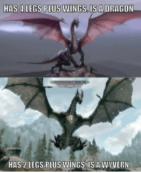 Skyrim, Wings, and For: SUWINGS. IS ADRAGON  HAS 2 LEGS PLUS WINGS.IS A WVUERN Learning this nearly ruined Skyrim for me. Nearly. https://t.co/KW30oCUBrQ