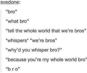 "Bro: svedone:  ""bro""  ""what bro""  ""tell the whole world that we're bros""  *whispers* ""we're bros""  ""why'd you whisper bro?""  ""because you're my whole world bro""  ""bro"" Bro"