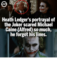 The only one!!! 🙌🏼 Respect!!! Fact via: @dcfact 👌🏼 @discoveryfacts comic comics amazing interesting dc dccomics svf villain villains heathledger joker thejoker alfred michaelcaine batman foe dccu: SVF  Heath Ledger's portrayal of  the Joker scared Michael  Caine (Alfred) somuch,  he forgot his lines The only one!!! 🙌🏼 Respect!!! Fact via: @dcfact 👌🏼 @discoveryfacts comic comics amazing interesting dc dccomics svf villain villains heathledger joker thejoker alfred michaelcaine batman foe dccu