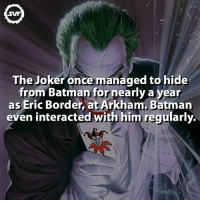 The Joker!!! 🃏 ADD A HASHTAG FOR THIS FACT!!!🖋 joker fact facts dc dcvillains dccomics comic comics thejoker batman thebatman robin jasontodd jerone svf ericborder epic geek: SVF  The Joker once managed to hide  from Batman for nearly a year  as Eric Border, at Arkham Batman  even interacted with him regularly. The Joker!!! 🃏 ADD A HASHTAG FOR THIS FACT!!!🖋 joker fact facts dc dcvillains dccomics comic comics thejoker batman thebatman robin jasontodd jerone svf ericborder epic geek