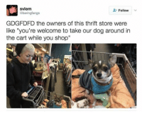 "I NEED TO GO TO THIS SHOP: svlem  Follow  abaringfangs  GDGFDFD the owners of this thrift store were  like ""you're welcome to take our dog around in  the cart while you shop I NEED TO GO TO THIS SHOP"