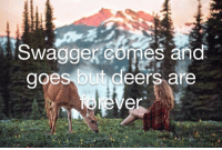 intensional: using the new editing abilities on the Facebook messenger for a good cause : Swaggercomes and  goes but deers are intensional: using the new editing abilities on the Facebook messenger for a good cause