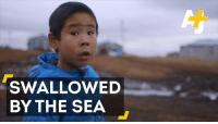 """Memes, 🤖, and Adaptation: SWALLOWED  BY THE SEA """"You can't adapt, you just have to get out of the way.""""  Alaskan Native villages are threatened by rising sea levels and coastal erosion."""