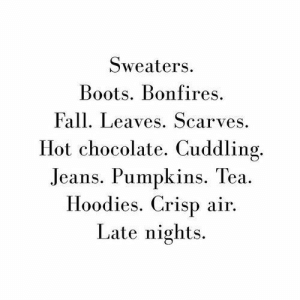 sweaters: Sweaters  Boots. Bonfires  Fall. Leaves. Scarves  Hot chocolate. Cuddling.  Jeans. Pumpkins. Tea  Hoodies. Crisp air  Late nights.
