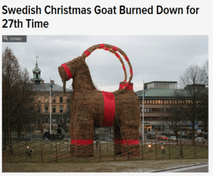 "Anna, Apparently, and Birthday: Swedish Christmas Goat Burned Down for  27th Time  a EXPAND empress-delilah: empress-delilah:  dornishjedi:  wannabanauthor:  kablob17:  cindehella:  lord-kitschener:  arealliveghost:  stillvisions:  maybenotboring:  and at no point has anyone thought ""maybe we should not build a giant flammable goat this year""  They tried fireproofing. And armed guards. And fences, and cameras… Sadly the wikipedia page has been cut down by super srs folks to remove all the awesome Keystone cops tales of the goat's history (emphasis added by me)  1966 Stig Gavlén came up with the idea of a giant goat made out of straw. But it turned out that Gavlén organisation did not have enough funding for the goat. Then Harry Ström, who at that time was the chairman of the Södra Kungsgatan Ideella Förening (a non-profit society), decided to pay the whole cost for the goat out of his own pocket. The goat stood until midnight of New Year's Eve, when it went up in flames. The perpetrator, who was from Hofors,Gästrikland, was found and convicted of vandalism. The first goat was insured and Ström got all his money back.  1967 Nothing happened.  1968 The goat survived. A fence was built around the goat. Previously it was popular for children to play hide-and-seek inside and around the goat. There was also a rumor that one night a couple had sex inside the goat. In subsequent years the inside of the goat was protected by a chicken-wire net.  1969 The goat was burnt down on New Year's Eve.  1970 The goat was burnt down only six hours after it was assembled. Two very drunk teenagers were connected with the crime. With help from several financial contributors the goat was reassembled out of lake reed.  1971 The Southern Merchants got tired of their goats being burned and stopped building the goat. The Natural Science Club (Naturvetenskapliga Föreningen:NF) from the School of Vasa (Vasaskolan) took over.   1972 The goat collapsed because of sabotage.  1973 N/A  1974 Burnt.  1975 N/A  1976 Hit by a car.  1977 N/A  1978 Again, the goat was kicked to pieces.  1979 The goat was burnt even before it was erected. A new one was built and fireproofed. It was destroyed and broken into pieces.  1980 Burnt down on Christmas Eve.  1981 Nothing happened.  1982 Burnt down on Lucia (13 December).  1983 The legs were destroyed.  1984 Burnt down on 12 December, the night before Lucia.  1985 The 12.5 metre (41 ft) tall goat of the Natural Science Club was featured in the Guinness Book of Records for the first time. Even though the goat was enclosed by a 2 metres (6.6 ft) high metal fence, guarded by Securitas and even soldiers from the Gävle I 14 Infantry Regiment, it was burnt down in January.  1986 The merchants of Gävle decided they were willing to build the goat once again. From 1986 on two goats were built, the Southern Merchants' and the School of Vasa's. The big goat burnt down the night before Christmas Eve.  1987 A heavily fireproofed goat was built. It got burnt down a week before Christmas.[21]  1988 Nothing happened to the goat, but gamblers were for the first time able to gamble on the fate of the goat with English bookmakers.  1989 Again, the goat burnt down before it was assembled. Financial contributions from the public were raised to rebuild a goat that was burnt down in January. In March 1990 another goat was built, this time for the shooting of a Swedish motion picture called Black Jack.  1990 Nothing happened. The goat was guarded by many volunteers.  1991 The goat was joined by an advertising sled, that turned out to be illegally built. On the morning of Christmas Eve the goat was burnt down. It was later rebuilt to be taken to Stockholm as a part of a protest campaign against the closing of the I 14 Infantry Regiment.  1992 The goat was burnt down eight days after it was built. The Natural Science Club's goat burnt down the same night. The Southern Merchants' goat was rebuilt, but burned down on 20 December. The perpetrator of the three attacks was caught and sent to jail. The Goat Committee was founded in 1992.  1993 Once more the goat was featured in the Guinness Book of Records, the School of Vasa's goat measured 14.9 metres (49 ft). The goat was guarded by taxis and the Swedish Home Guard. Nothing happened.  1994 Nothing happened. The goat followed the Swedish national hockey team to Italy for the World Championship in hockey.  1995 A Norwegian was arrested for attempting to burn down the goat. Burnt down on the morning of Christmas Day. Rebuilt to be standing before the 550th anniversary of Gävle county.  1996 The first time the goat was guarded by webcams, nothing happened.  1997 Damaged by fireworks. The Natural Science Club's goat was attacked too, but survived with minor damage.  1998 Burnt down on 11 December, even though there was a major blizzard. Was rebuilt.  1999 Burnt down only a couple of hours after it was erected. Rebuilt again before Lucia. The Natural Science Club's goat was burnt down as well.  2000 Burnt down a couple of days before New Year's Eve. The Natural Science Club's goat got tossed in the Gävle river.  2001 Goat set on fire on 23 December by Lawrence Jones, a 51-year-old visitor from Cleveland, Ohio, who spent 18 days in jail and was subsequently convicted and ordered to pay 100,000 Swedish kronor in damages. The court confiscated Jones's cigarette lighter with the argument that he clearly was not able to handle it. Jones stated in court that he was no ""goat burner"", and believed that he was taking part in a completely legal goat-burning tradition. After Jones was released from jail he went straight back to the US without paying his fine. As of 2006 it was still unpaid. The Natural Science Club's goat was also burnt down.  2002 A 22 year old from Stockholm tried to set the Southern Merchants' goat on fire, but failed, the goat receiving only minor damage. On Lucia the goat was guarded by Swedish radio and TV personality Gert Fylking.  2003 Burnt down on 12 December.  2004 Burnt 21 December, only three days before Christmas Eve. The fire brigade quickly arrived on the scene, but the goat could not be saved. No new goat was built.  2005 Burnt by unknown vandals reportedly dressed as Santa and the gingerbread man, by shooting a flaming arrow at the goat at 21:00 on 3 December. Reconstructed on 5 December. The hunt for the arsonist responsible for the goat-burning in 2005 was featured on the weekly Swedish live broadcast TV3's ""Most Wanted"" (""Efterlyst"") on 8 December.  2006 On the night of 15 December at 03:00, someone tried to set fire to the goat by dousing the right front leg in petrol (gasoline). The red ribbon on that leg was slightly burned and fell off. The lower part of the right leg was scorched, but the rest of the goat failed to light. The leg was repaired that morning. The Natural Science Club's goat was burned at about 00:40 on 20 December; the vandals were not seen and got away. On the night of 25 December, a drunken man managed to climb up on the goat. Before the police arrived on the scene the man climbed down and disappeared. He did not try to set fire to the goat. The Southern Merchants' goat survived New Year's Eve and was taken down on 2 January. It is now stored in a secret location.  2007 The Natural Science Club's goat was toppled on 13 December and was burned on the night of 24 December. The Southern Merchants' goat survived.  2008 10,000 people turned out for the inauguration of one of the goats. No back-up goat was built to replace the main goat should the worst happen, nor was the goat treated with flame repellent (Anna Östman, spokesperson of the Goat-committee said the repellent made it look ugly in the previous years, like a brown terrier). On 16 December the Natural Science Club's Goat was vandalised and later removed. On 26 December there was an attempt to burn down the Southern Merchants' Goat but patriotic passers-by managed to extinguish the fire. The following day the goat finally succumbed to the flames ignited by an unknown assailant at 03:50 CET.  2009 A person attempted to set the Southern Merchants' goat on fire the night of 7 December. An unsuccessful attempt was made to throw the Natural Science Club's goat into the river the weekend of 11 December. The culprit then tried, again without success, to set the goat on fire. Someone stole the Natural Science Club's goat utilizing a truck the night of 14 December.[36] On the night of 23 December before 04:00 the South Merchant goat was set on fire and was burned to the frame, even though it had a thick layer of snow on its back.[37] The goat had two online webcams which were put out of service by aDoS attack, instigated by computer hackers just before the burning.[38]  2010 On the night of 2 December, arsonists made an unsuccessful attempt to burn the Natural Science Club's goat.[39] On 17 December, a Swedish news site reported that one of the guards tasked with protecting the Southern Merchants' goat had been offered payment to leave his post so that the goat could be stolen via helicopter and transported to Stockholm. Both goats survived and were dismantled and returned to storage in early January 2011.  2011 The inauguration of the goat took place on 27 November. The fire-fighters of Gävle sprayed the goat with water to create a coating of ice in the hope of protecting it from arson. The goat was burnt down in the early morning of 2 December.  2012 The inauguration of the goat took place on 2 December. It was burnt just ten days later in the hours before midnight of 12 December, one day before Lucia.  2013 As in 2006 and 2007, the straw used to build the goat has been soaked in anti-flammable liquid to prevent it from burning in the event of an arson attack. The inauguration ceremony took place on 1 December. But despite the anti-flammable liquids the goat was burnt down on the early morning of December 21. Any history of plots involving a DDoS attack on the security cameras, a plot to steal it with a helicopter and flaming arrows shot by people dressed as Santa and the Gingerbread man is just plain hilarious in my book.  I'm laughing so much about this goat. obviously if you build something big enough people are going to have sex in it and burn it down. obviously  what the fuck is going on in sweden   how will the saga continue this year  2015: The goat was burned.  I lost it at the last comment.   Reblog for the season.  the time of the goat is upon us! 2016 update: it's the 50th anniversary so, naturally, it needs a birthday party. Streamed, apparently w a fucking english commentator for all the world to enjoy. It's gonna be cringeworthy for sure. Also, it's wearing a bow tie.  which probably won't dissuade aspiring goat murderers any more than its cutesy tweets have, but can't fault them for trying.   lmao ok it lasted a couple of hours."