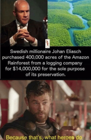 Amazon, Heroes, and Proud: Swedish millionaire Johan Eliasch  purchased 400,000 acres of the Amazon  Rainforest from a logging company  for $14,000,000 for the sole purpose  of its preservation.  Because that's, what heroes do *proud swedish noises*