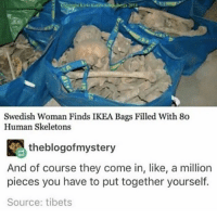 My dad said something about IKEA and all the memes just went through my head all at once ( ͡° ͜ʖ ͡°) (Credit tagged) clean meme cleanmeme cleanmemes lol laughoutloud funny laughing laughinguntilicry laugh crying hilarious hahaha haha ha 😂 🤣 relatable wow omg used common stolen borrowed joking joker joke maymays maymay: Swedish Woman Finds IKEA Bags Filled With 80  Human Skeletons  theblogofmystery  And of course they come in, like, a million  pieces you have to put together yourself.  Source: tibets My dad said something about IKEA and all the memes just went through my head all at once ( ͡° ͜ʖ ͡°) (Credit tagged) clean meme cleanmeme cleanmemes lol laughoutloud funny laughing laughinguntilicry laugh crying hilarious hahaha haha ha 😂 🤣 relatable wow omg used common stolen borrowed joking joker joke maymays maymay