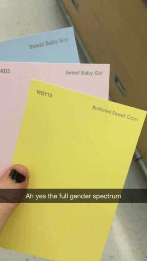 Gender-specific colors when youre expecting: Sweet Baby Boy  RO3  Sweet Baby Girl  WGY15  Buttered Sweet Corn  Ah yes the full gender spectrum Gender-specific colors when youre expecting