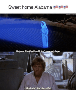 Tatooine, FUCK YEAH!: Sweet home Alabama  OHMYFORCE  Help me, Obi-Wan Kenobi. You're my only hope.  Who is she? She's beautiful. Tatooine, FUCK YEAH!