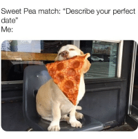 "Date, Link, and Match: Sweet Pea match: ""Describe your perfect  date""  Me: Will the dog in your @sweetpeaapp pic be joining us? Link in bio to download 💕"