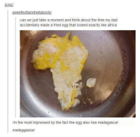 fried egg: sweetbuttandhellabooty  can we just take a moment and think about the time my dad  accidentally made a fried egg that looked exactly like africa  im the most impressed by the fact the egg also has madagascar  madeggascar