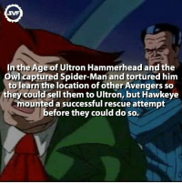 Memes, Spider, and SpiderMan: SWF  In the Age of Ultron Hammerhead and the  Owl captured Spider-Man and tortured him  to learn the location of other Avengers so  they could sell them to Ultron, but Hawkeye  mounted a successful rescue attempt  before they could do so. Hammerhead and The Owl! 😈😈 FOLLOW: @superheroes.facts 😉 spiderman hammerhead theowl owl svf ageofultron age ultron amazing interesting svf fact facts comic comics marvelcomics interestingfacts interesting geek marvelvillains villains movies like comment tag