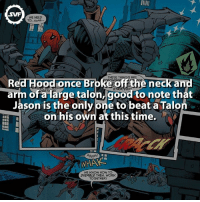 Red Hood!!! redhood comic comics dc dcfact fact facts amazing interesting batman thejoker joker: SWF  WE NEED  TO,,,unnh.  THESE THINGS ARE  ce  neck and  off t  arm OGET  arge talon, good to note that  of Jason is the only Dne to beat a Talo  on his own at this time.  Agggh!  WHAA  WE KNOW HOW TO  DISABLE THEM. WORK  TOGETHER! Red Hood!!! redhood comic comics dc dcfact fact facts amazing interesting batman thejoker joker