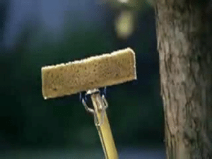 """Swiffer WetJet """"Flower Delivery"""" Commercial Song: Swiffer WetJet """"Flower Delivery"""" Commercial Song"""