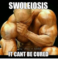 Looks like you're swole for life.: SWOLEIOSIS  IT CANT BE CURED Looks like you're swole for life.