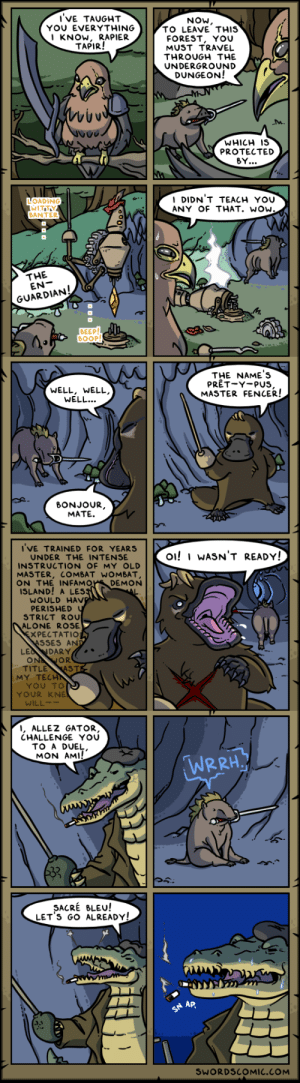 Swords Recap ~ The Adventures of Rapier Tapir: Swords Recap ~ The Adventures of Rapier Tapir