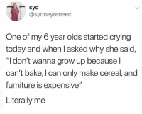 "Crying, Funny, and Furniture: syd  @sydneyreneec  One of my 6 year olds started crying  today and when l asked why she said,  ""I don't wanna grow up because l  can't bake, l can only make cereal, and  furniture is expensive""  Literally me She's a prophet."