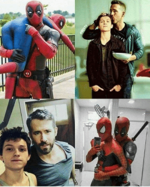 25 Best Deadpool And Spiderman Memes Syi Memes Tumblr Com Memes You Are Memes