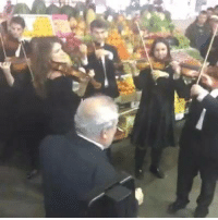 Memes, Marketable, and 🤖: Symphony flash mob at Moscow farmers market!!!!!!!!!!