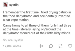 Food, Kitties, and Vape: systlin  I remember the first time I tried drying catnip in  the food dehydrator, and accidentally invented  a cat vape station.  Came home to all three of them (only had three  at the time) literally laying on/around the  dehydrator stoned out of their little kitty minds.  Source: systlin  17,809 notes Stoned kitties