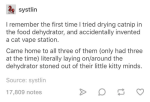 Food, Vape, and Home: systlin  I remember the first time I tried drying catnip in  the food dehydrator, and accidentally invented  a cat vape station.  Came home to all three of them (only had three  at the time) literally laying on/around the  dehydrator stoned out of their little kitty minds.  Source: systlin  17,809 notes Stoner kitty