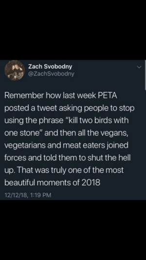 "Beautiful, Dank, and Memes: sZach Svobodny  @ZachSvobodny  Remember how last week PETA  posted a tweet asking people to stop  using the phrase ""kill two birds with  one stone"" and then all the vegans,  vegetarians and meat eaters joined  forces and told them to shut the hell  up. That was truly one of the most  beautiful moments of 2018  12/12/18, 1:19 PM They are our allies now by findo_trashman MORE MEMES"