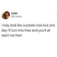 damn this is hella inspirational: SZRP  @trvpism  i may look like a potato now but one  day i'll turn into fries and you'll all  want me then damn this is hella inspirational