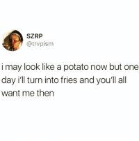 Funny, Potato, and Single: SZRP  @trvpism  i may look like a potato now but one  day i'll turn into fries and youll all  want me then My mantra @insta.single 😅