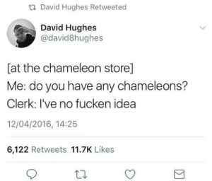 Chameleon, Idea, and Can: t David Hughes Retweeted  David Hughes  @david8hughes  [at the chameleon store]  Me: do you have any chameleons?  Clerk: I've no fucken idea  12/04/2016, 14:25  6,122 Retweets 11.7K Likes Cant sell what you cant see