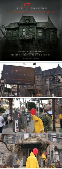 Fucking, Funny, and Vine: T H E  EXPERIENC E  NEIBOLT HOUSE HOLLYWOOD  AUGUST 14SEPTEMBER 10  1 PM11 PM DAILY  CORNER OF HOLLYWOOD BLVD & VINE ST.  THATSWHEREITLIVES.COM   THE  EXPERIENCE  JE Free entrance but u have to RSVP or if you go early enough they will let you go in but how fucking tight is this! This is a MUST 😭 https://t.co/fbz3KnYA6R