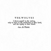 Blood, Their, and Loyalty: T H E. W OL VES  only to learn of the tenderness in their howl  and the loyalty in their blood.  -Isra Al-Thibeh