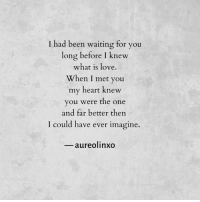 Long Before: T had been waiting for you  long before I knew  what is love  When I met you  my heart knew  you were the one  and far better then  could have ever imagine.  aureolinxo