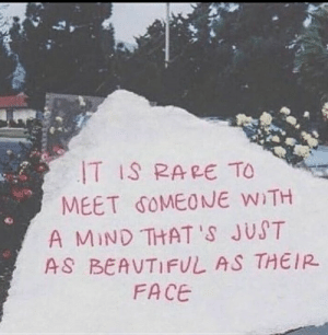 Mind, Rare, and Face: T IS RARE TO  MEET δ0MEONE WITH  A MIND THAT 'S JUST  AS BEAUTIF しAS THEIR  FACE