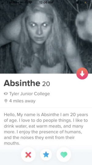 tinderventure:  If this ain't wife material then idk what is: T-Mobile Wi-Fi ?  12:06 AM  Absinthe 20  Tyler Junior College  4 miles away  Hello, My name is Absinthe I am 20 years  of age. I love to do people things. I like to  drink water, eat warm meats, and many  more. I enjoy the presence of humans,  and the noises they emit from their  mouths. tinderventure:  If this ain't wife material then idk what is
