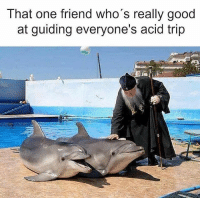 Memes, Good, and 🤖: T nat one friend who s really good  at guiding everyone's acid trip Good job buddy