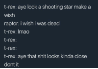 """Memes, Shit, and Http: t-rex: aye look a shooting star make a  wish  raptor: i wish i was dead  t-rex: Imao  t-rex:  t-rex:  t-rex: aye that shit looks kinda close  dont it <p>too close there via /r/memes <a href=""""http://ift.tt/2GMlUBt"""">http://ift.tt/2GMlUBt</a></p>"""