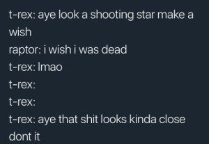 too close there by vashtanerada82 FOLLOW 4 MORE MEMES.: t-rex: aye look a shooting star make a  wish  raptor: i wish i was dead  t-rex:Imao  t-rex:  t-rex:  t-rex: aye that shit looks kinda close  dont it too close there by vashtanerada82 FOLLOW 4 MORE MEMES.